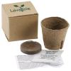 View Image 1 of 3 of Plant in a Recycled Box