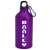 Aluminum Water Bottle with Carabiner - 16 oz. - Matte - 24 hr
