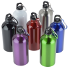 View Extra Image 1 of 1 of Carabiner Stainless Steel Water Bottle - 16 oz. - 24 hr