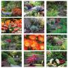 View Extra Image 1 of 1 of Beautiful Gardens Calendar - Stapled