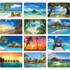 View Extra Image 4 of 4 of Tropical Desk Calendar
