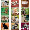 View Extra Image 1 of 1 of Puppies & Kittens Appointment Calendar - Mini