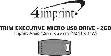 Imprint Area of Executive Trim USB Drive - 2GB